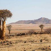 Namibia-Reisevorbereitung