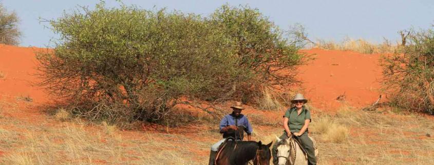 Reiten Reitsafari Safari Leni