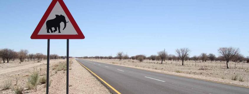 Road Signs Namibia, Straßenschilder, Schild, Elefant