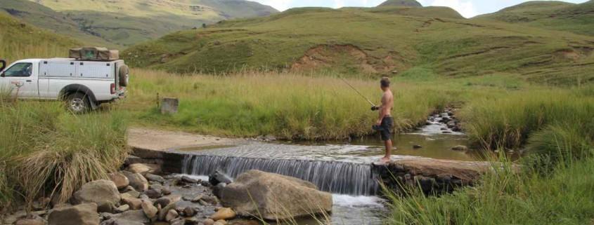 Angeln, Drakensberge, Lothoni