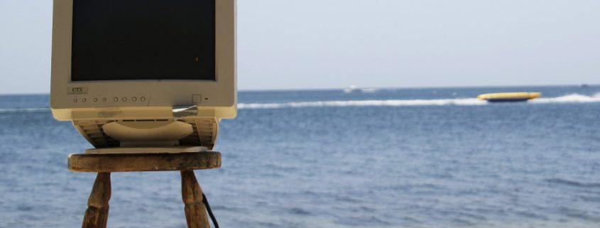 Walflüsterer-arbeiten-chillen