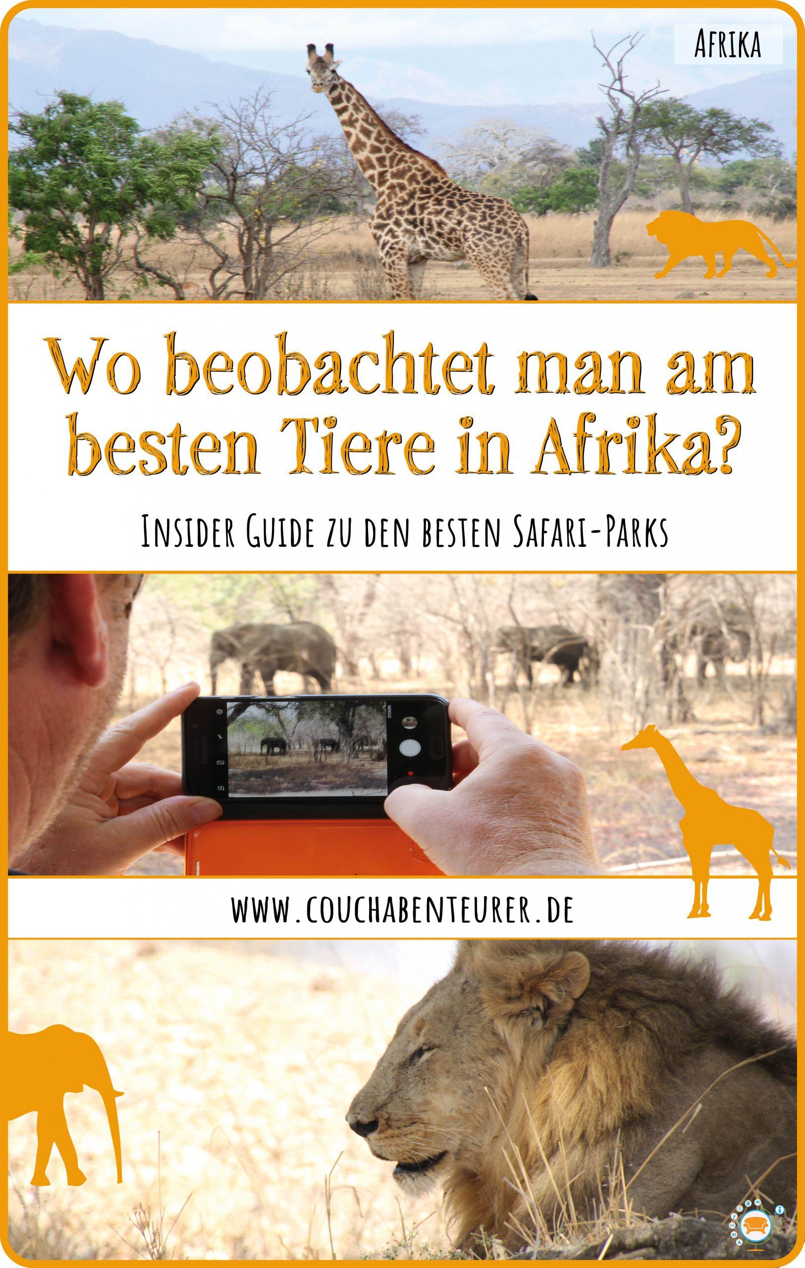wo-beobachtet-man-am-besten-tiere-in-afrika-insider-guide-besten-safari-parks_Pinterest